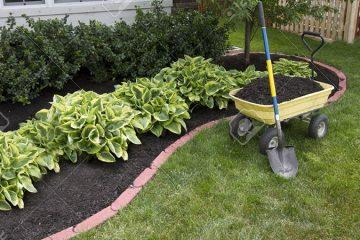 Mulch & Bed Edging